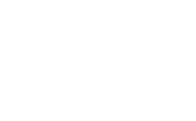 Savvy Fox Logo White
